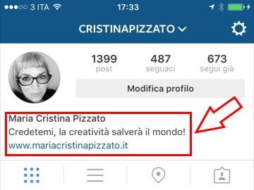 Instagram-bio-account-business