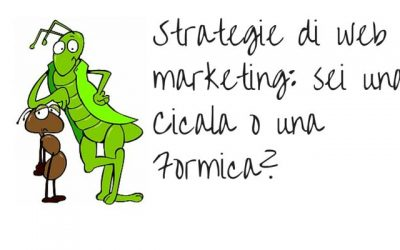 Strategie di web marketing: sei una Cicala o una Formica?